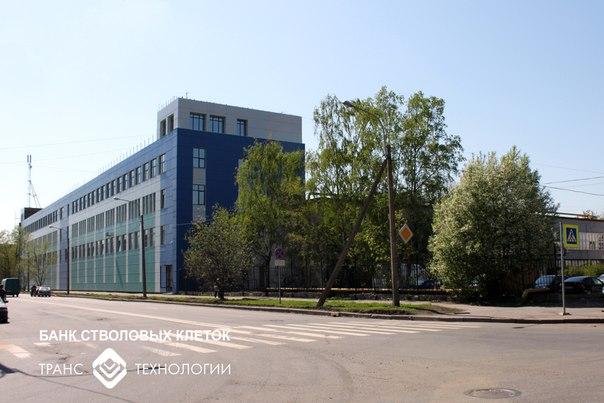 Банк стволовых клеток панорама